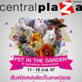 Pet In The Garden 2014