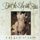 อัลบั้ม Paint The Sky With Stars